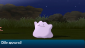 BEST 6IV DITTO GUIDE! EASIEST Pokemon Sun and Moon Ditto SOS Chaining for 6IV Ditto